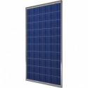 Солнечные панели EverExceed Polycrystalline ESM250-156 (250W)